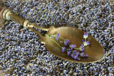 Mire használjuk az év gyógynövényét, a  levendulát?
